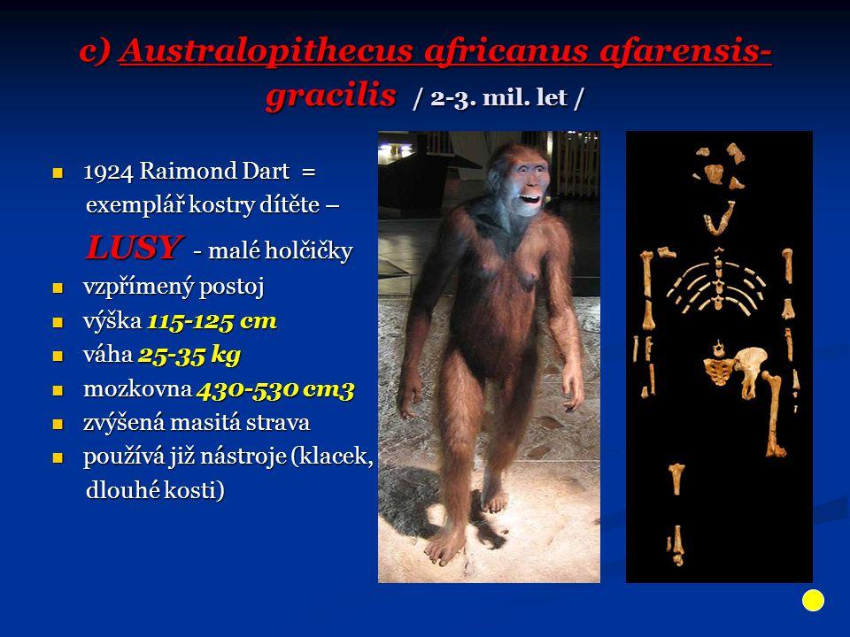 c) Australopithecus africanus afarensis- gracilis / 2-3. mil. let / 1924 Raimond Dart = 1924 Raimond Dart = exemplář kostry dítěte – exemplář kostry d