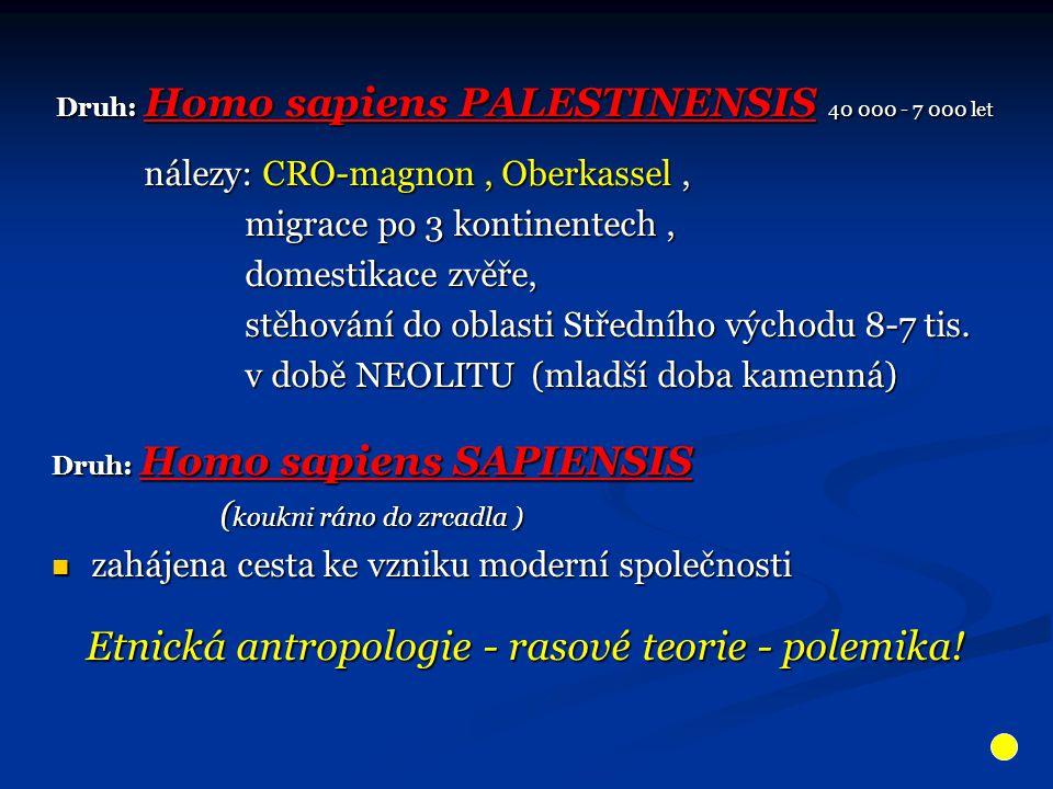 Druh: Homo sapiens PALESTINENSIS 40 000 - 7 000 let Druh: Homo sapiens PALESTINENSIS 40 000 - 7 000 let nálezy: CRO-magnon, Oberkassel, nálezy: CRO-ma