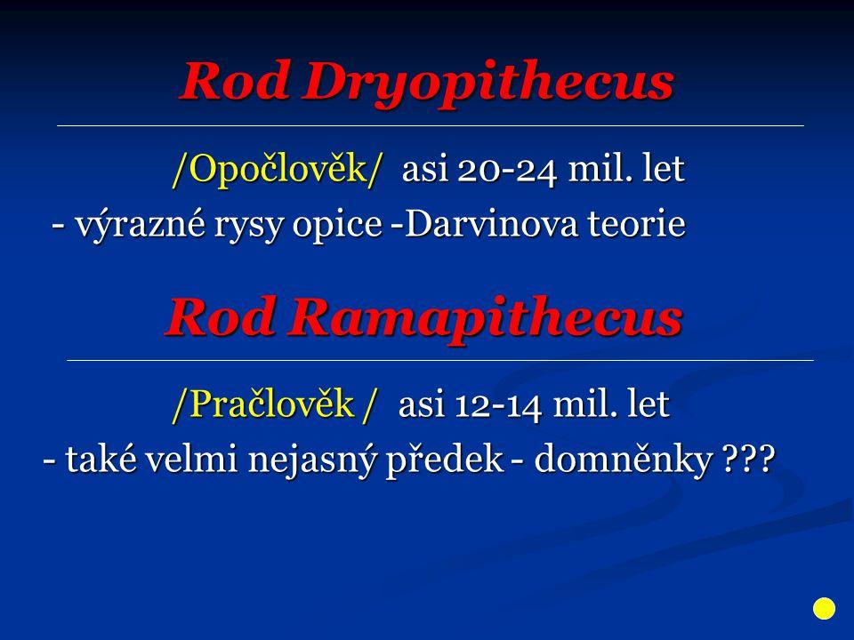 Rod Dryopithecus /Opočlověk/ asi 20-24 mil. let /Opočlověk/ asi 20-24 mil. let - výrazné rysy opice -Darvinova teorie - výrazné rysy opice -Darvinova