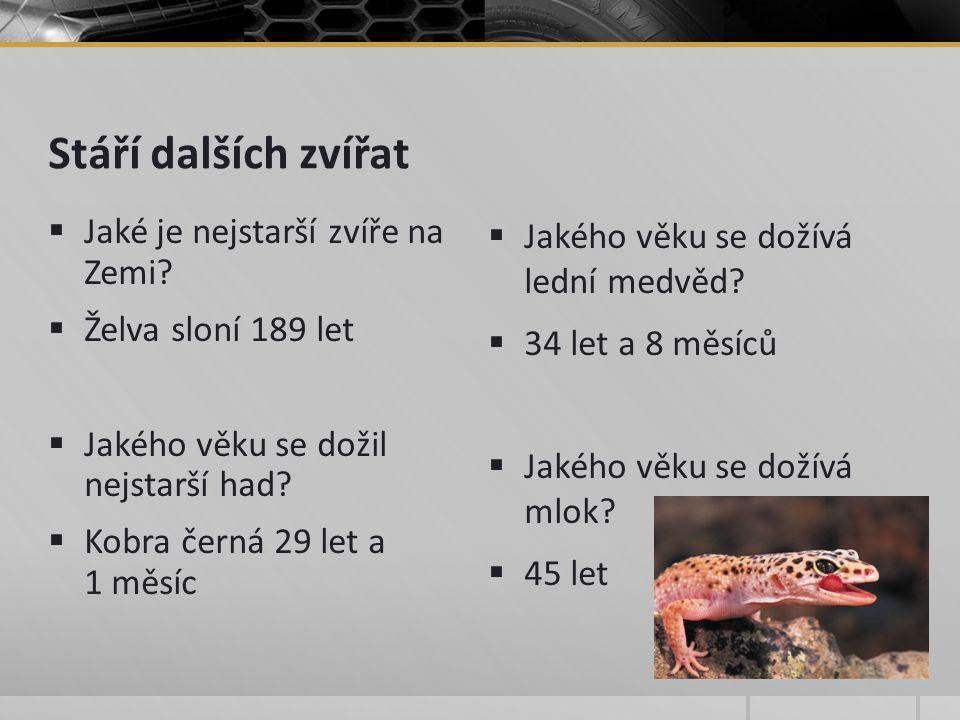 Stáří dalších zvířat  Jaké je nejstarší zvíře na Zemi.