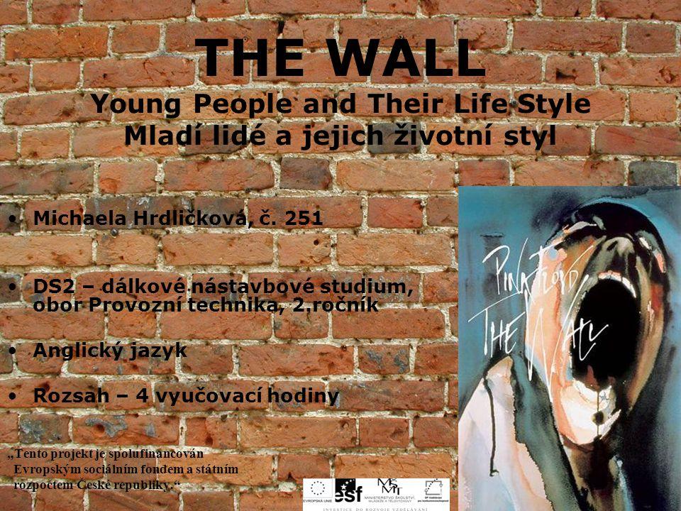 THE WALL Young People and Their Life Style Mladí lidé a jejich životní styl Michaela Hrdličková, č. 251 DS2 – dálkové nástavbové studium, obor Provozn