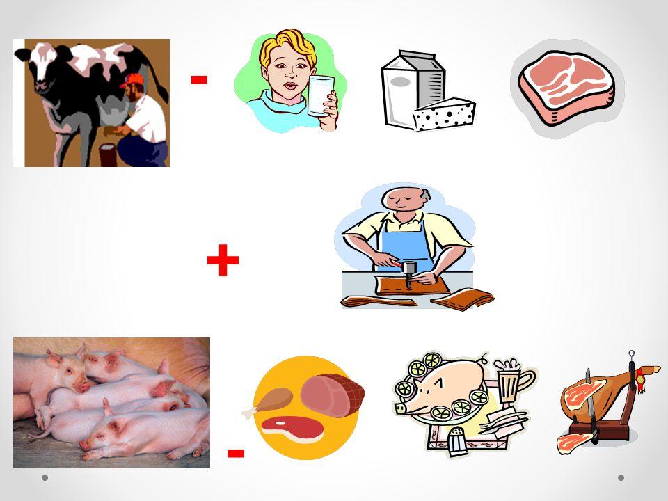 Správné odpovědi: - mléko sýr maso - kůže maso maso šunka - -