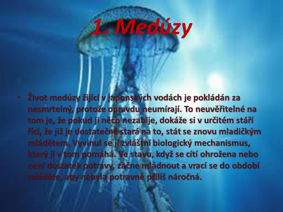 1. Medúzy Život medúzy žijící v japonských vodách je pokládán za nesmrtelný, protože opravdu neumírají. To neuvěřitelné na tom je, že pokud ji něco ne