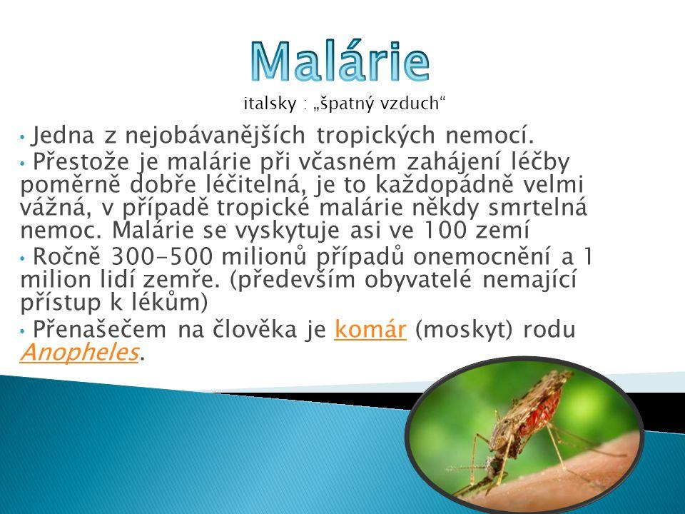  Malárii způsobují čtyři druhy parazitových prvoků rodu Plasmodium napadajících v organismu červené krvinky.