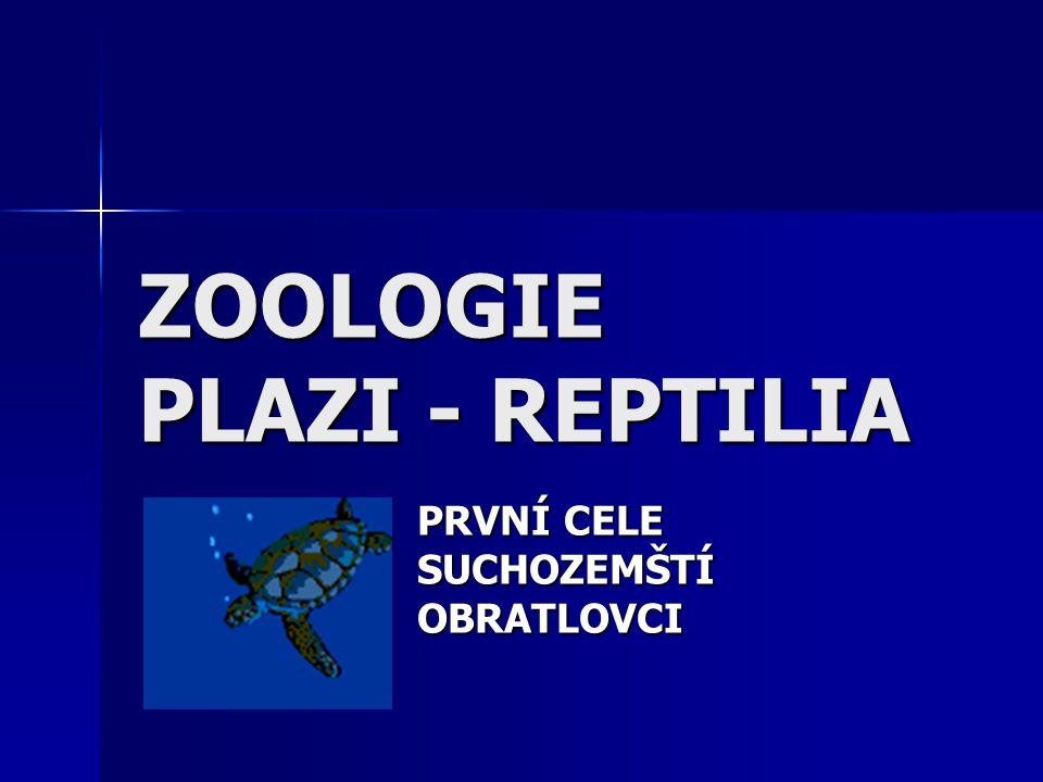 SOŠS a SOU KadaňZoologie - Plazi11 Užovkovití Nejedovatí hadi, nebo mají zadní jedové zuby.