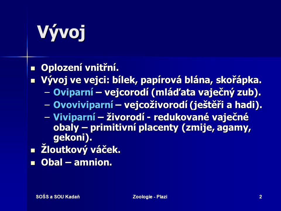 SOŠS a SOU KadaňZoologie - Plazi2 Vývoj Oplození vnitřní.
