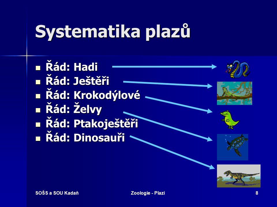 SOŠS a SOU KadaňZoologie - Plazi38 Krokodýlové Zahrnuje nejméně 20 čeledí už vyhynulých (tzv.