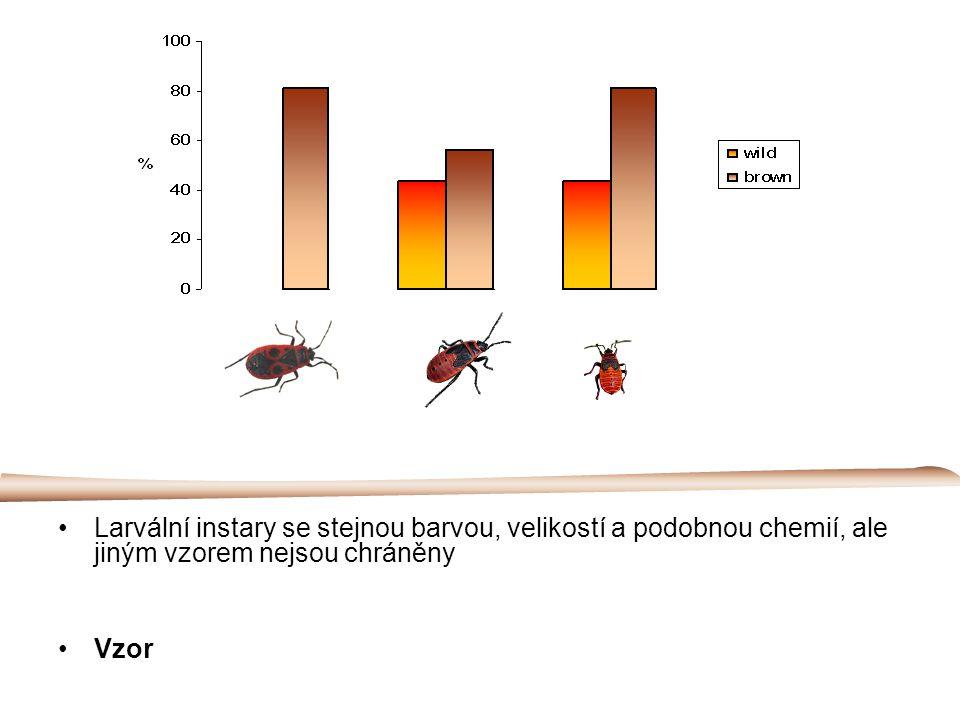 Larvální instary se stejnou barvou, velikostí a podobnou chemií, ale jiným vzorem nejsou chráněny Vzor