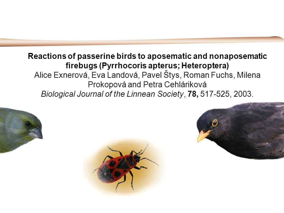 Reactions of passerine birds to aposematic and nonaposematic firebugs (Pyrrhocoris apterus; Heteroptera) Alice Exnerová, Eva Landová, Pavel Štys, Roma