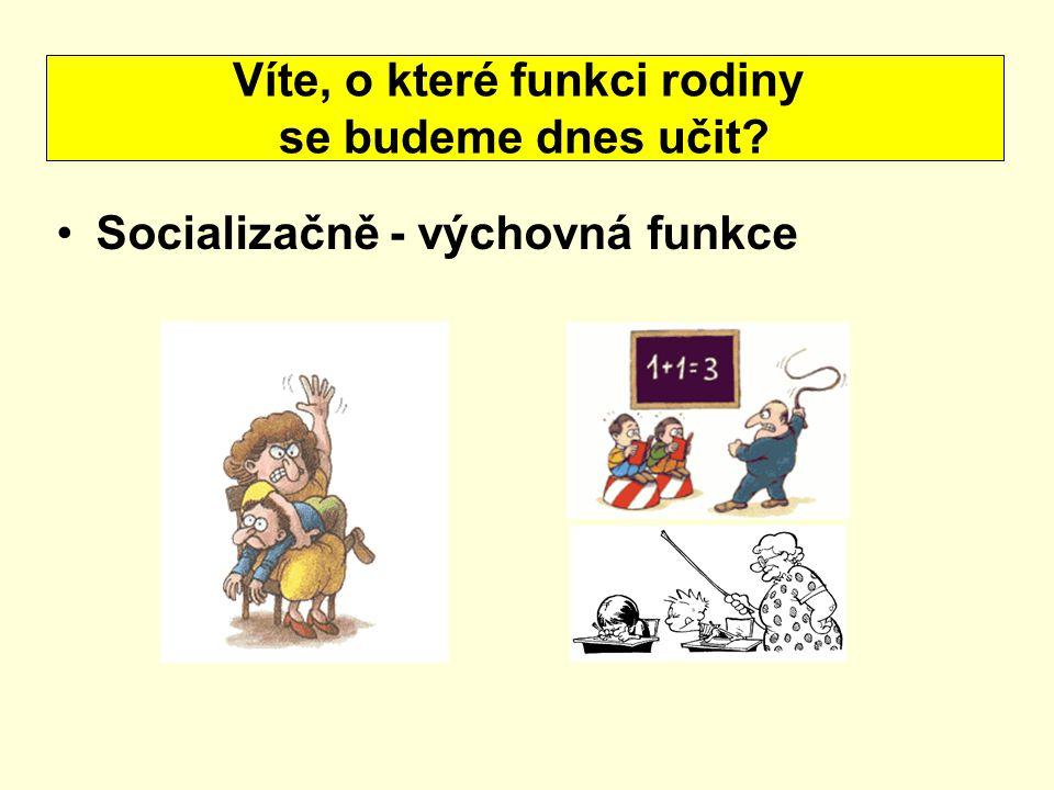 proces začleňování jedince do společenských vztahů je to vlečení (vedení) dětí k zásadám Co je to socializace.