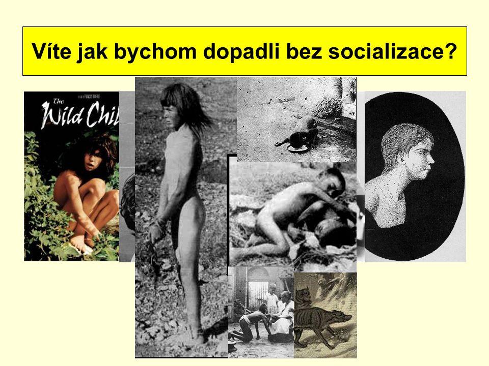Víte jak bychom dopadli bez socializace?
