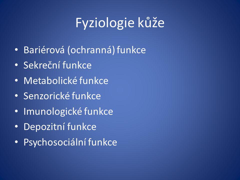 Fyziologie kůže Bariérová (ochranná) funkce Sekreční funkce Metabolické funkce Senzorické funkce Imunologické funkce Depozitní funkce Psychosociální f
