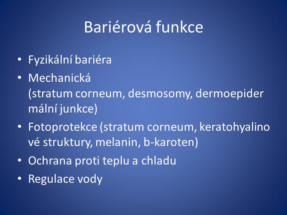 Bariérová funkce Fyzikální bariéra Mechanická (stratum corneum, desmosomy, dermoepider mální junkce) Fotoprotekce (stratum corneum, keratohyalino vé s