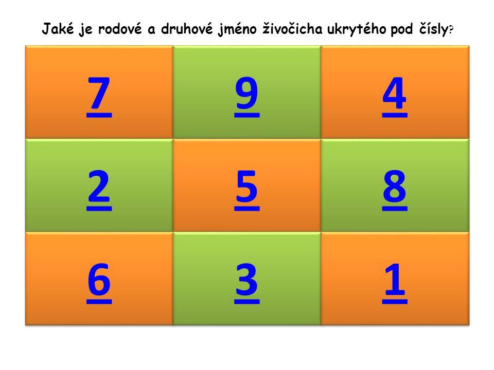 7 7 9 9 4 4 2 2 5 5 8 8 6 6 3 3 1 1 Jaké je rodové a druhové jméno živočicha ukrytého pod čísly ?