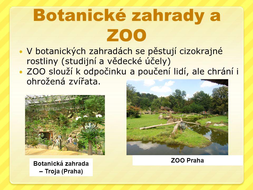 Botanické zahrady a ZOO V botanických zahradách se pěstují cizokrajné rostliny (studijní a vědecké účely) ZOO slouží k odpočinku a poučení lidí, ale c