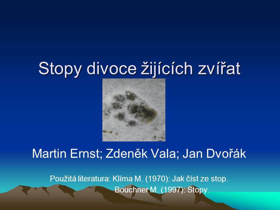 Stopy divoce žijících zvířat Martin Ernst; Zdeněk Vala; Jan Dvořák Použitá literatura: Klíma M. (1970): Jak číst ze stop. Bouchner M. (1997): Stopy.