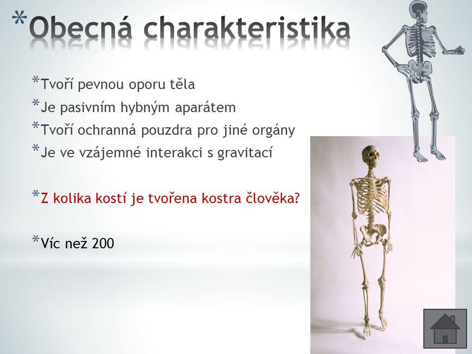 * Tvoří pevnou oporu těla * Je pasivním hybným aparátem * Tvoří ochranná pouzdra pro jiné orgány * Je ve vzájemné interakci s gravitací * Z kolika kostí je tvořena kostra člověka.