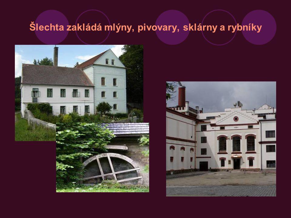 Šlechta zakládá mlýny, pivovary, sklárny a rybníky