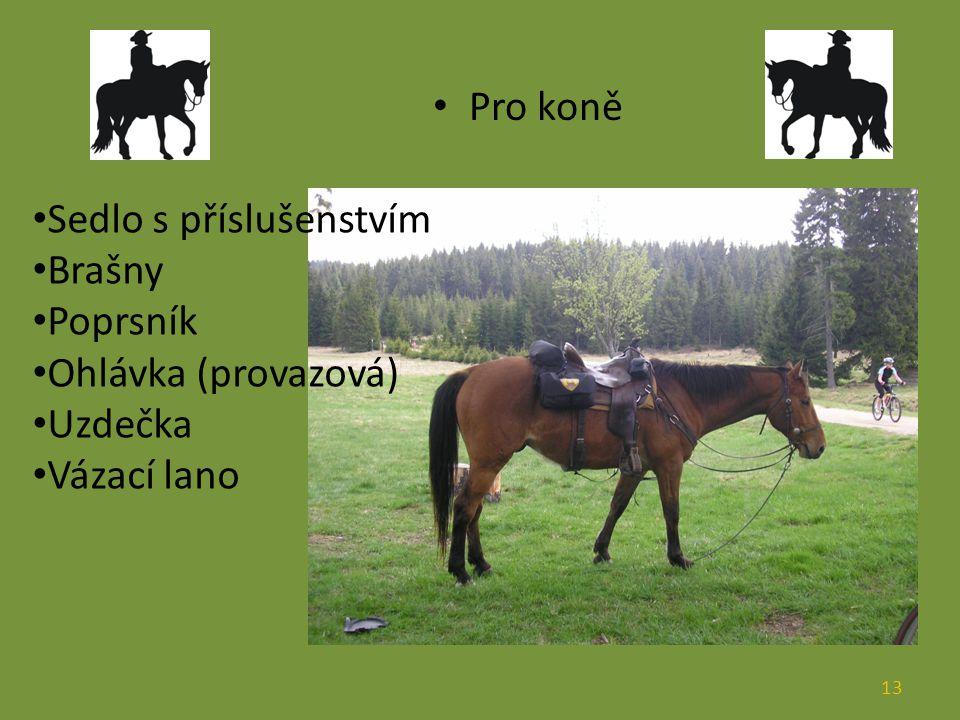 Pro koně Sedlo s příslušenstvím Brašny Poprsník Ohlávka (provazová) Uzdečka Vázací lano 13
