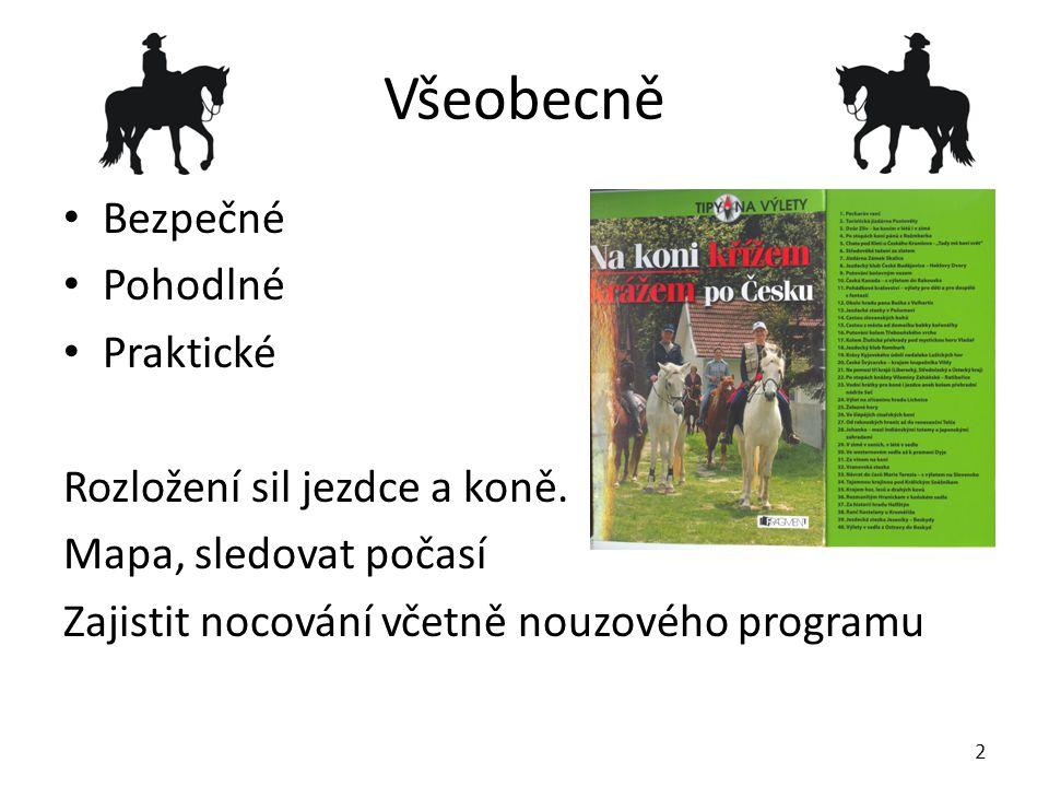 Všeobecně Bezpečné Pohodlné Praktické Rozložení sil jezdce a koně.