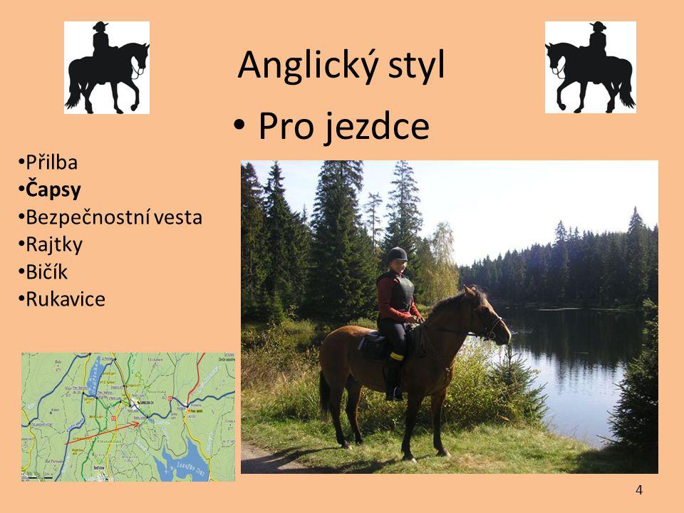 Anglický styl Pro jezdce Přilba Čapsy Bezpečnostní vesta Rajtky Bičík Rukavice 4