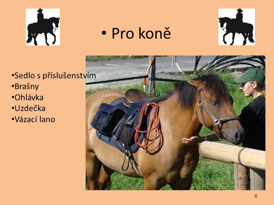 Pro koně Sedlo s příslušenstvím Brašny Ohlávka Uzdečka Vázací lano 6