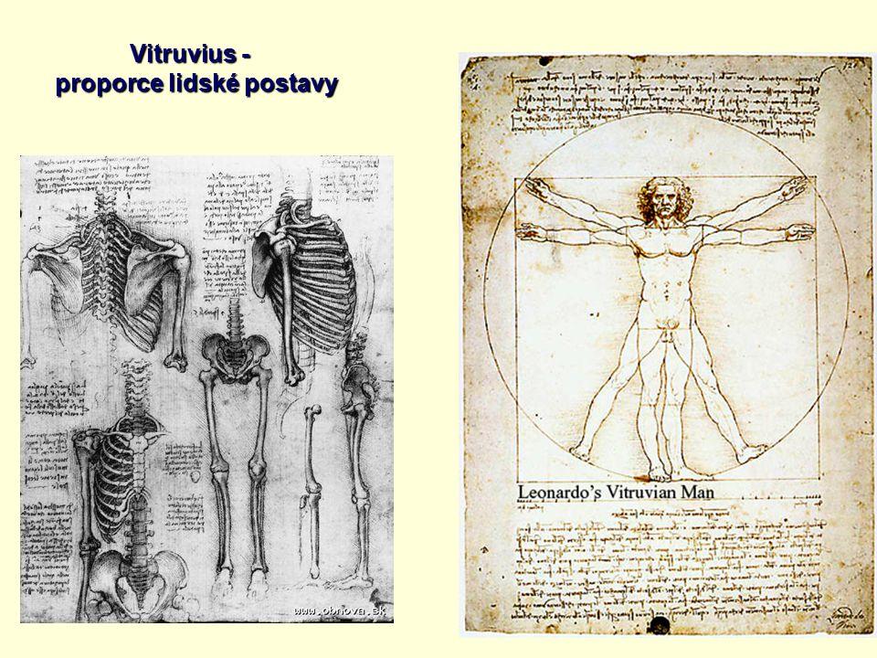 Vitruvius - proporce lidské postavy proporce lidské postavy