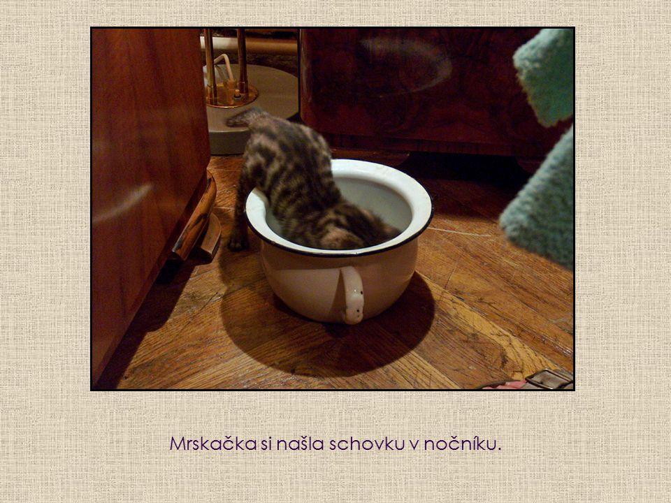 Matylda kojí obě koťata.