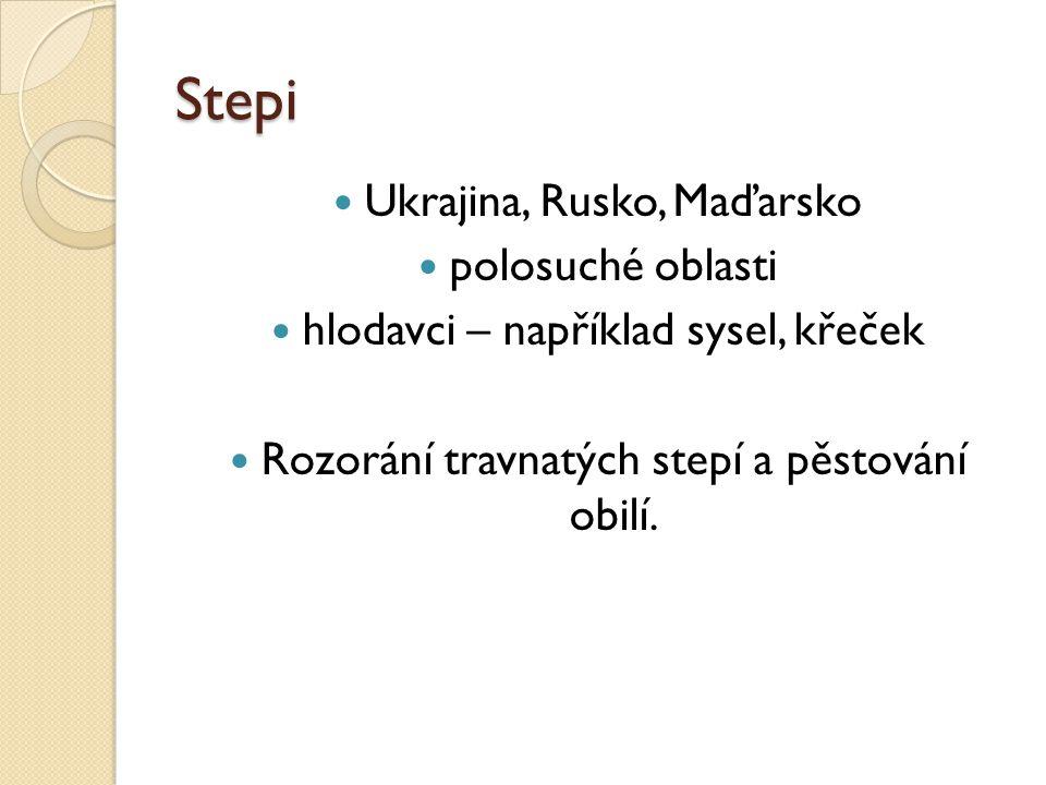 Stepi Ukrajina, Rusko, Maďarsko polosuché oblasti hlodavci – například sysel, křeček Rozorání travnatých stepí a pěstování obilí.
