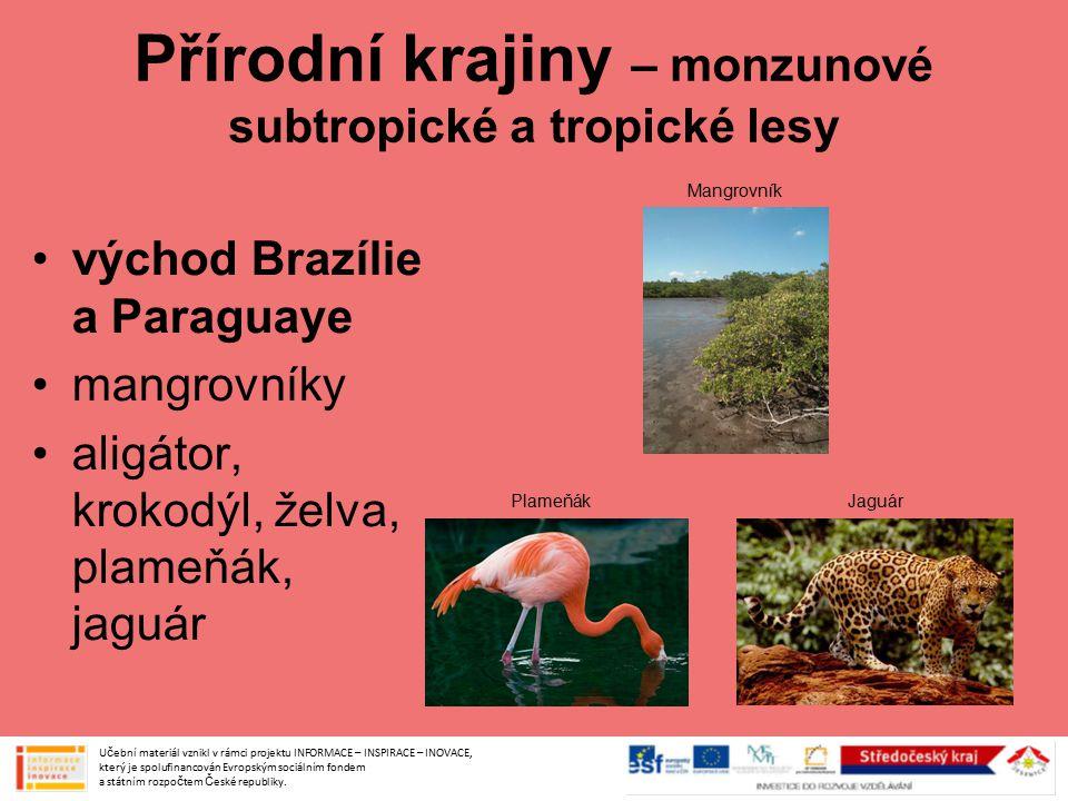 Přírodní krajiny – monzunové subtropické a tropické lesy východ Brazílie a Paraguaye mangrovníky aligátor, krokodýl, želva, plameňák, jaguár Učební ma