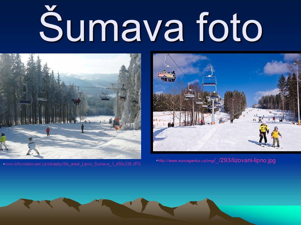 Šumava foto http://www.euroagentur.cz/img /_/293/lizovani-lipno.jpg www.info-cestovani.cz/obrazky/Ski_areal_Lipno_Sumava_1_450x338.JPG
