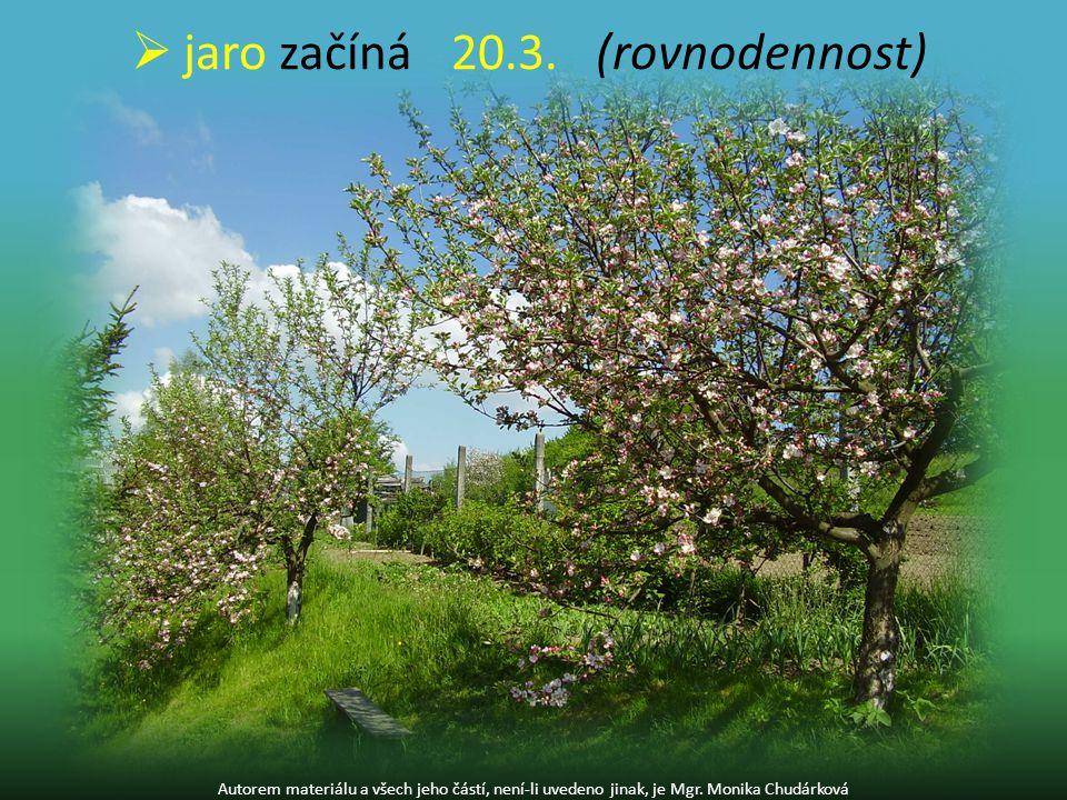 Autorem materiálu a všech jeho částí, není-li uvedeno jinak, je Mgr. Monika Chudárková  jaro začíná20.3. (rovnodennost)