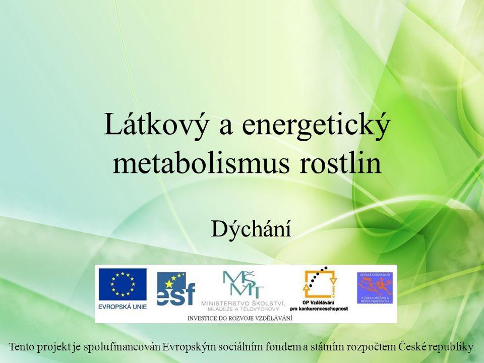 Látkový a energetický metabolismus rostlin Tento projekt je spolufinancován Evropským sociálním fondem a státním rozpočtem České republiky Dýchání