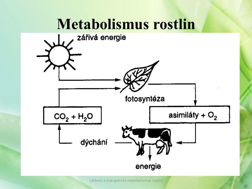 Metabolismus rostlin 16Látkový a energetický metabolismus rostlin