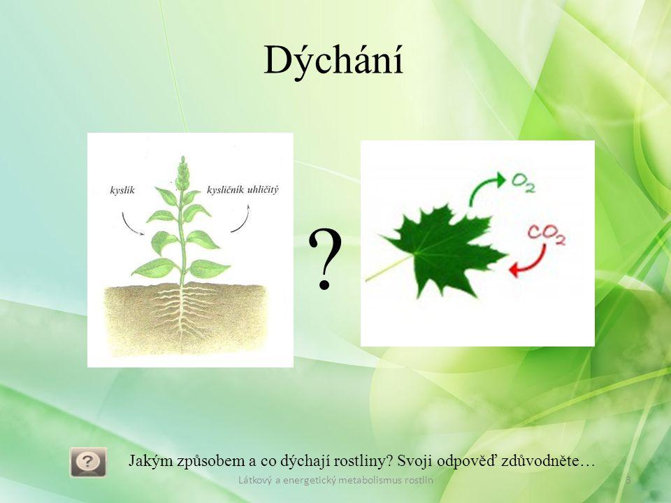 Dýchání 3Látkový a energetický metabolismus rostlin Jakým způsobem a co dýchají rostliny? Svoji odpověď zdůvodněte… ?