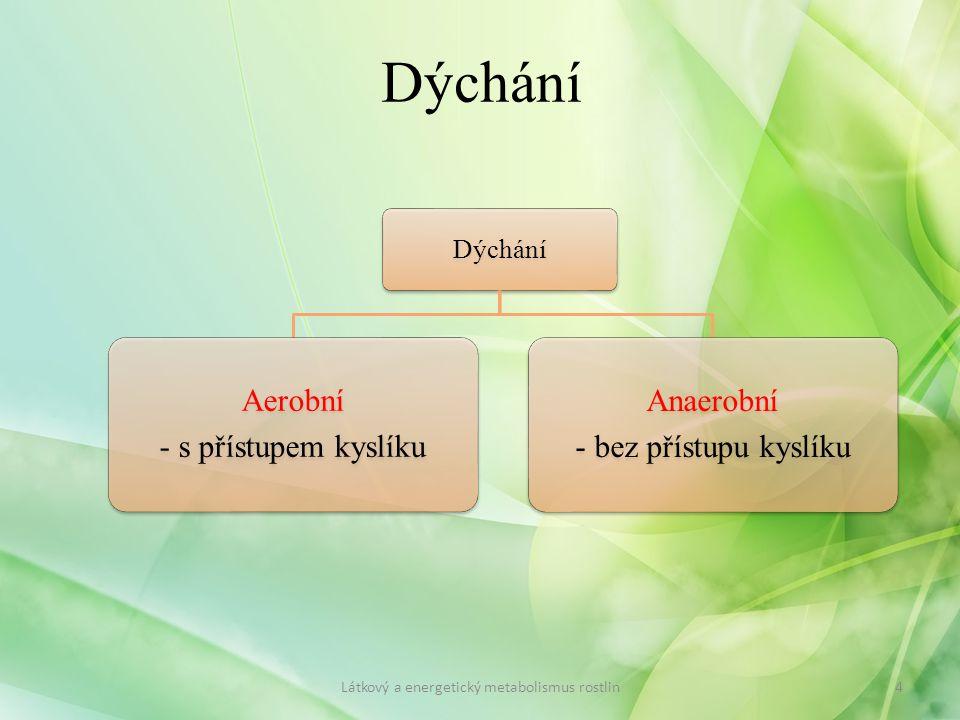 Dýchání Aerobní - s přístupem kyslíku Anaerobní - bez přístupu kyslíku Látkový a energetický metabolismus rostlin4