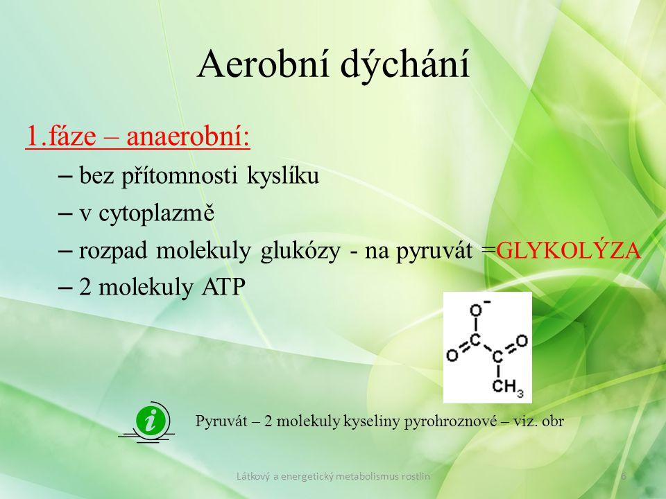 Aerobní dýchání 1.fáze – anaerobní: – bez přítomnosti kyslíku – v cytoplazmě – rozpad molekuly glukózy - na pyruvát = GLYKOLÝZA – 2 molekuly ATP 6Látk