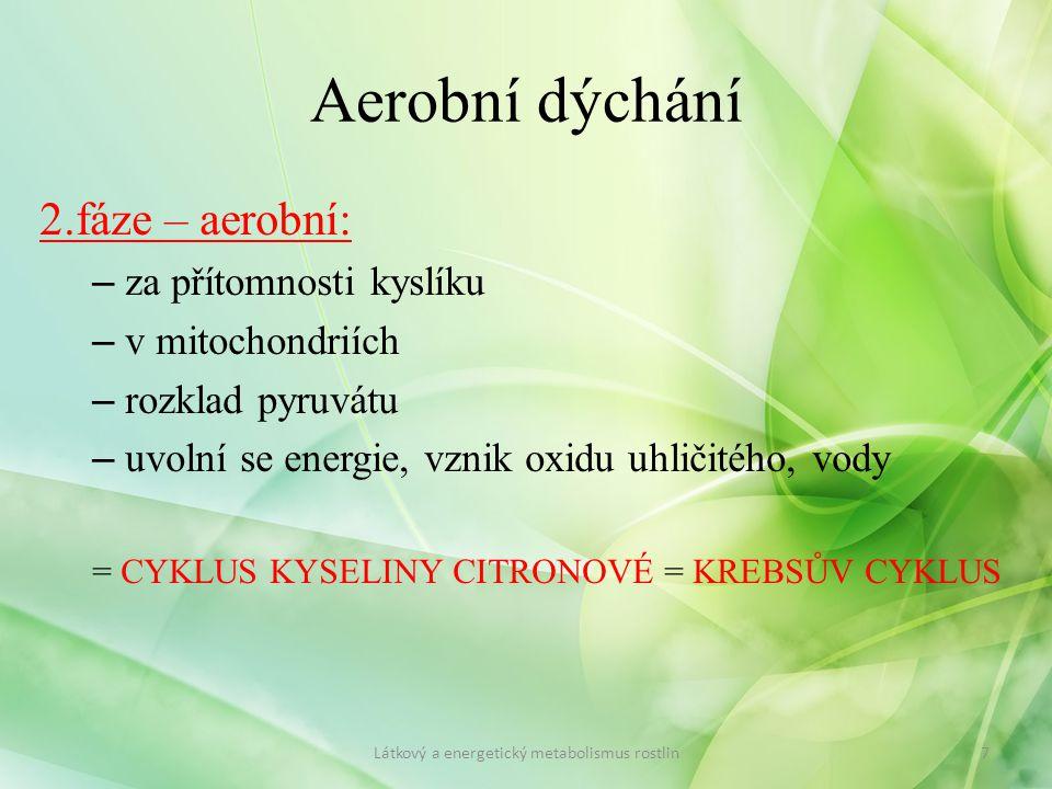 2.fáze – aerobní: – za přítomnosti kyslíku – v mitochondriích – rozklad pyruvátu – uvolní se energie, vznik oxidu uhličitého, vody = CYKLUS KYSELINY C