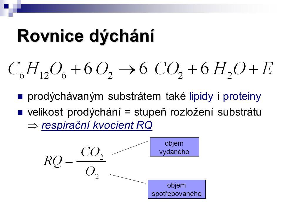 Etapy buněčného dýchání glykolýza aerobní dekarboxylace kyseliny pyrohroznové citrátový cyklus = Krebsův cyklus dýchací řetězec s oxidativní fosforylací