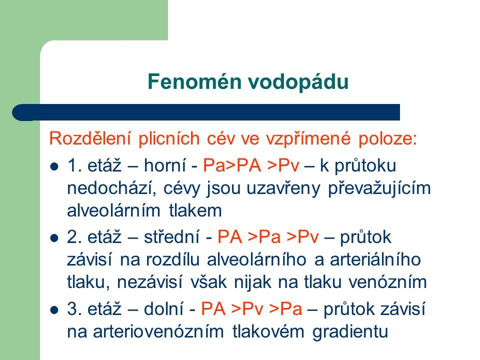 Fenomén vodopádu Rozdělení plicních cév ve vzpřímené poloze: 1. etáž – horní - Pa>PA >Pv – k průtoku nedochází, cévy jsou uzavřeny převažujícím alveol