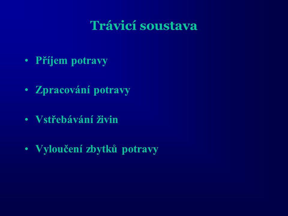 Ústní dutina - ústní otvor - pysky (vysunovatelné) - zuby Hltan - žaberní oblouky - požerákové zuby Jícen - orientace svaloviny - ductus pneumaticus (Žaludek) - sestupná část - vzestupná část - vrátník (Pylorické přívěsky) Střevo - proximální úsek - střední úsek - distální úsek Přídatné trávicí žlázy - játra (žlučník) - slinivka břišní