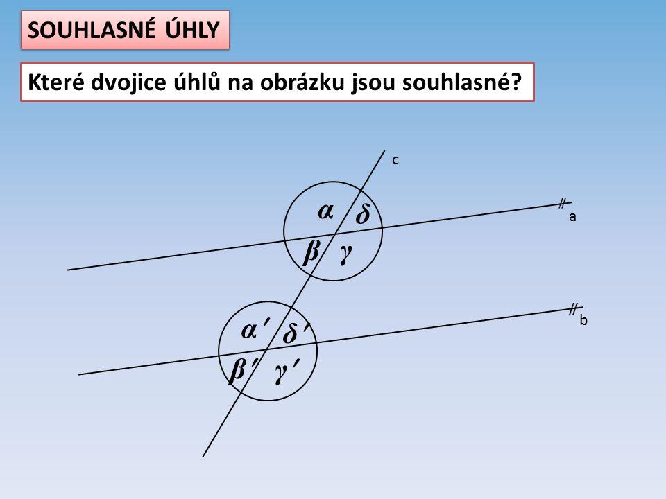 a b c  α β γ δ α β γ δ SOUHLASNÉ ÚHLY Které dvojice úhlů na obrázku jsou souhlasné?