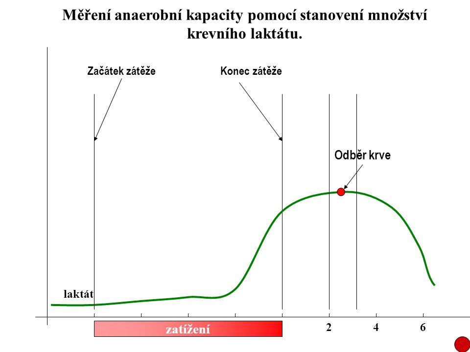 zatížení laktát 246 Odběr krve Začátek zátěžeKonec zátěže Měření anaerobní kapacity pomocí stanovení množství krevního laktátu.