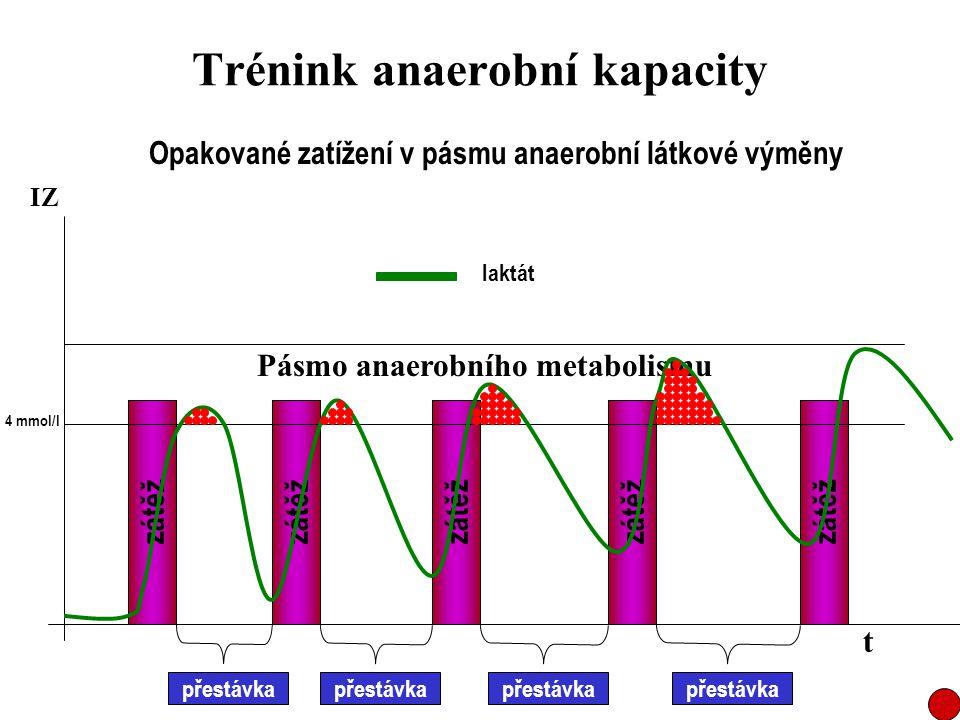 Trénink anaerobní kapacity Opakované zatížení v pásmu anaerobní látkové výměny zátěž přestávka Pásmo anaerobního metabolismu t IZ laktát 4 mmol/l