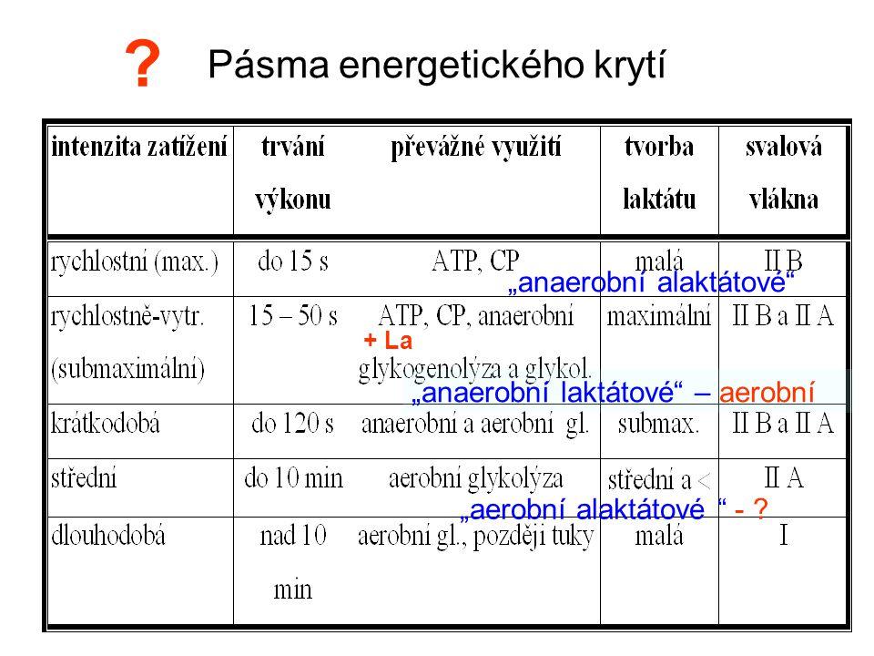 """Pásma energetického krytí """"anaerobní alaktátové"""" """"anaerobní laktátové"""" – aerobní """"aerobní alaktátové """" - ? ? + La"""