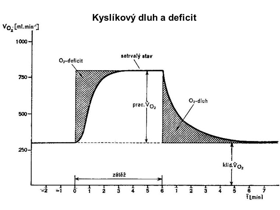 Kyslíkový dluh a deficit