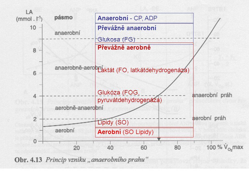 Anaerobní - CP, ADP Převážně anaerobní Glukosa (FG) Převážně aerobně Laktát (FO, latkátdehydrogenáza) Glukóza (FOG, pyruvátdehydrogenáza) Lipidy (SO)