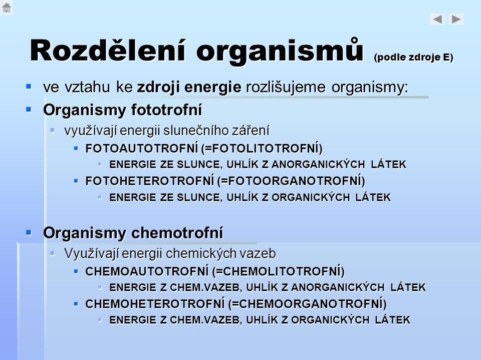 Rozdělení organismů (podle zdroje E)  ve vztahu ke zdroji energie rozlišujeme organismy:  Organismy fototrofní  využívají energii slunečního záření