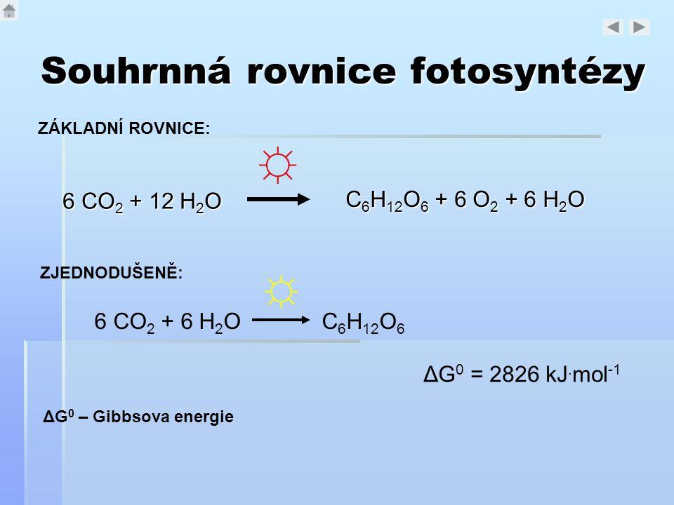 Souhrnná rovnice fotosyntézy 6 CO 2 + 12 H 2 O ΔG 0 = 2826 kJ. mol -1 ☼ C 6 H 12 O 6 + 6 O 2 + 6 H 2 O 6 CO 2 + 6 H 2 O C 6 H 12 O 6 ☼ ZJEDNODUŠENĚ: Z
