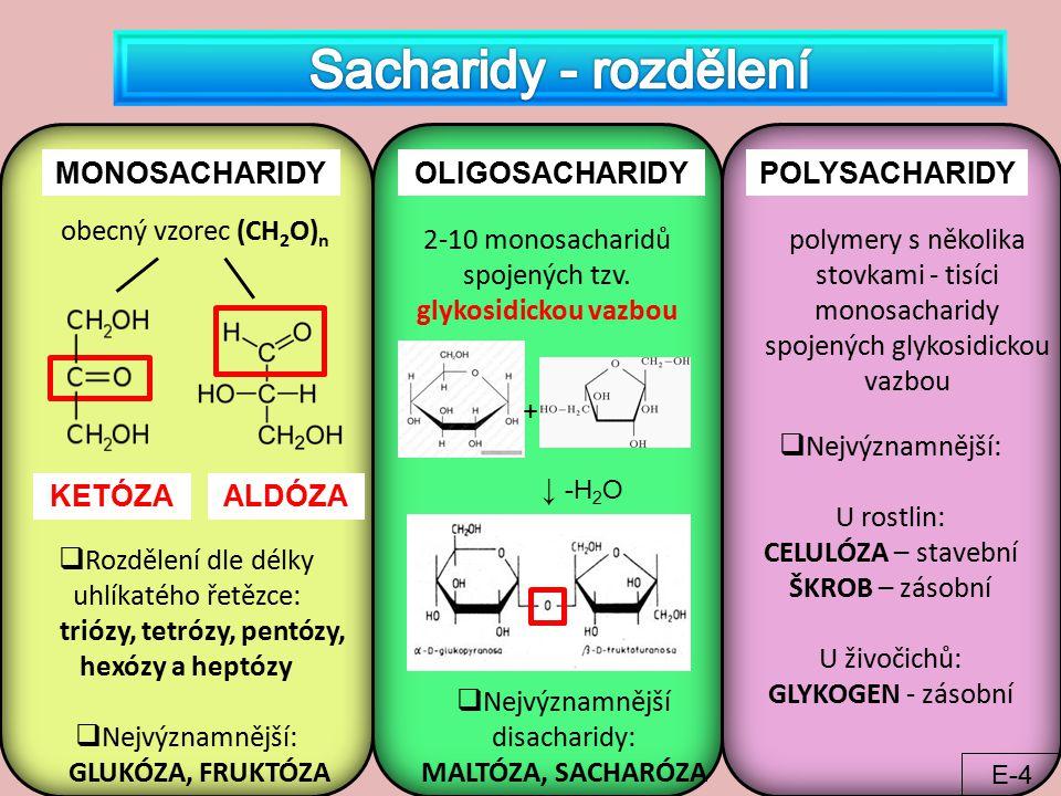 MONOSACHARIDYOLIGOSACHARIDYPOLYSACHARIDY  Rozdělení dle délky uhlíkatého řetězce: triózy, tetrózy, pentózy, hexózy a heptózy  Nejvýznamnější: GLUKÓZ
